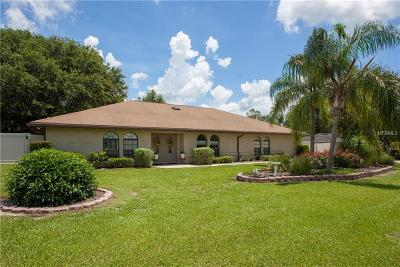 Lakeland Single Family Home For Sale: 4316 Iris Street N
