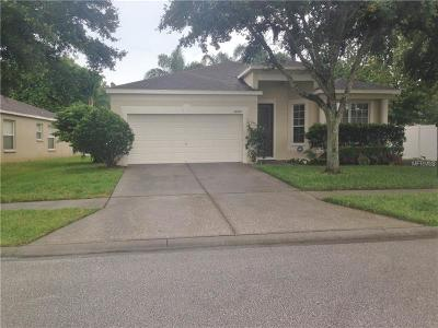 Wesley Chapel Single Family Home For Sale: 26845 Middleground Loop