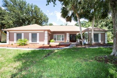 Tampa Single Family Home For Sale: 18507 Putters Place