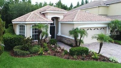 Hernando County, Hillsborough County, Pasco County, Pinellas County Single Family Home For Sale: 10880 Cory Lake Drive
