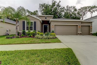 Riverview Single Family Home For Sale: 10434 Riverdale Rise Drive