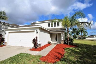 Riverview Single Family Home For Sale: 13560 Fladgate Mark Drive