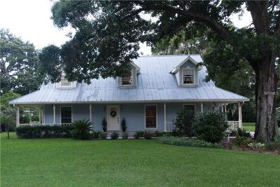 Valrico Single Family Home For Sale: 2217 Ray Road