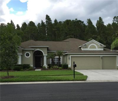 Wesley Chapel Single Family Home For Sale: 26600 Shoregrass Drive