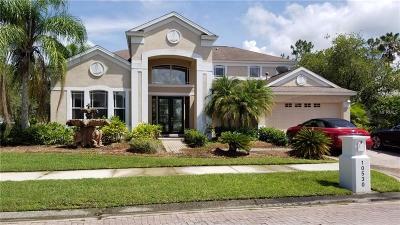 Hernando County, Hillsborough County, Pasco County, Pinellas County Single Family Home For Sale: 10530 Canary Isle Drive