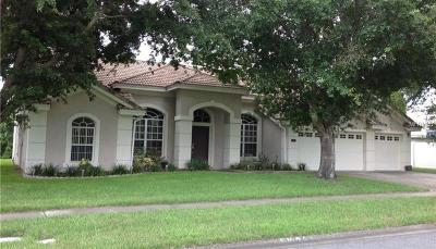 Odessa Single Family Home For Sale: 17218 Equestrian Trail