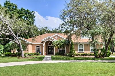 Lithia FL Single Family Home For Sale: $585,000