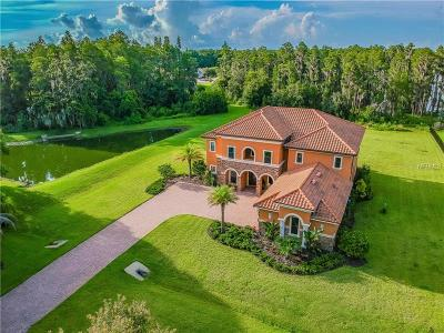 Lutz FL Single Family Home For Sale: $1,099,900