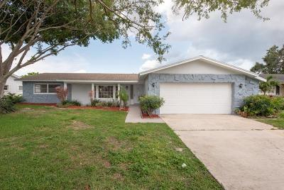 Hernando County, Hillsborough County, Pasco County, Pinellas County Single Family Home For Sale: 1470 52nd Avenue NE
