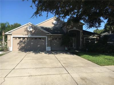 Riverview Single Family Home For Sale: 8919 Aberdeen Creek Circle