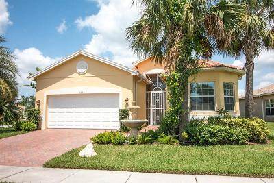 Wimauma Single Family Home For Sale: 5002 Crystal Beach Drive