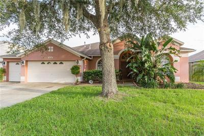 Valrico Single Family Home For Sale: 4508 River Overlook Drive