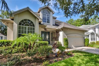 Hernando County, Hillsborough County, Pasco County, Pinellas County Single Family Home For Sale: 2928 Bayshore Vista Drive