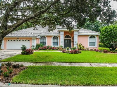 Tampa Single Family Home For Sale: 5011 Londonderry Drive
