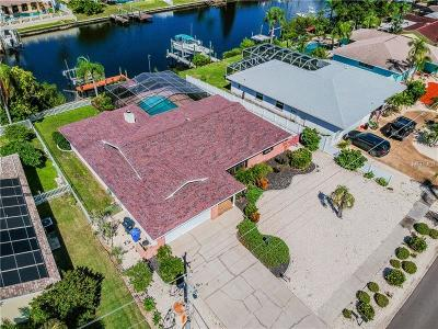 Apollo Beach Single Family Home For Sale: 719 Flamingo Drive