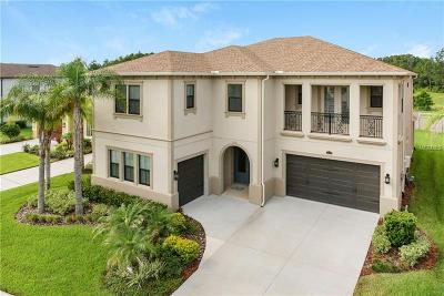 Wesley Chapel Single Family Home For Sale: 28738 Tavira Court