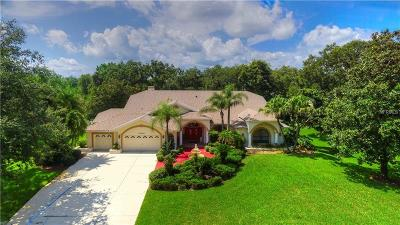 Zephyrhills Single Family Home For Sale: 35250 Lake Edward Drive