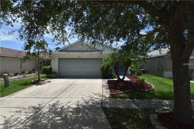 Riverview Single Family Home For Sale: 11550 Crestlake Village Drive