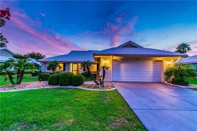 Sun City Center Single Family Home For Sale: 713 Elkhorn Road