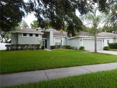 Valrico Single Family Home For Sale: 3102 Partridge Point Trail