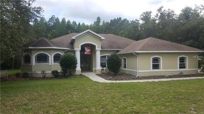 New Port Richey, New Port Richie Single Family Home For Sale: 10149 Miracle Lane