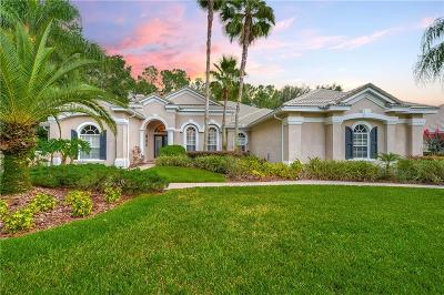 Valrico FL Single Family Home For Sale: $619,900