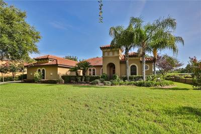 Seffner Single Family Home For Sale: 9812 Palazzo Street