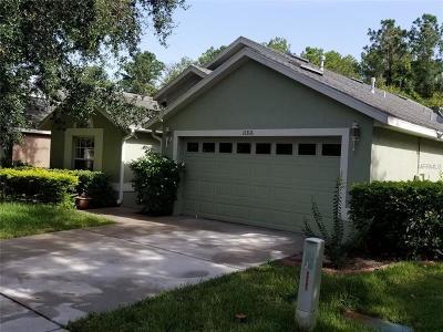 Lithia FL Single Family Home For Sale: $244,900