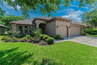Wesley Chapel Single Family Home For Sale: 4811 Diamonds Palm Loop