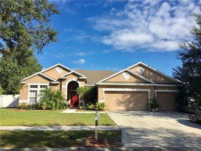 Riverview Single Family Home For Sale: 12402 Windmill Cove Drive