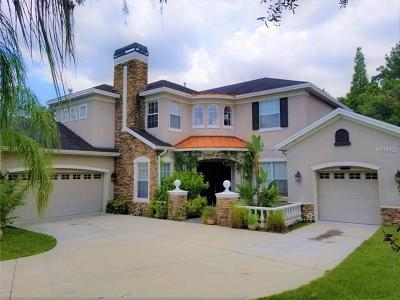 Hernando County, Hillsborough County, Pasco County, Pinellas County Single Family Home For Sale: 5120 Tari Stream Way