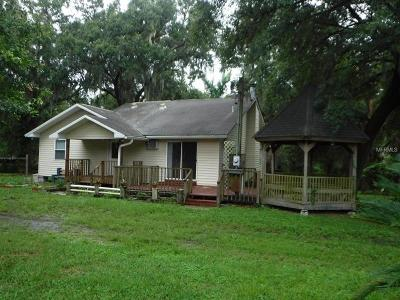 Lithia Single Family Home For Sale: 10211 Dry Bridge Road