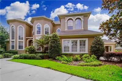 Tampa Rental For Rent: 18131 Longwater Run Drive