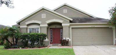 Weslely Chapel, Wesley Chapel Single Family Home For Sale: 30304 Ingalls Court