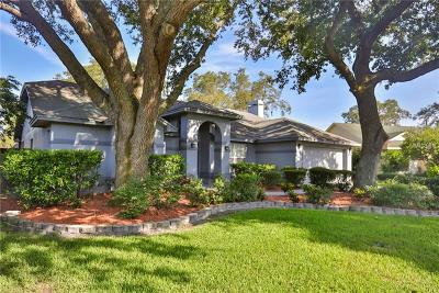 Tampa FL Single Family Home For Sale: $315,000