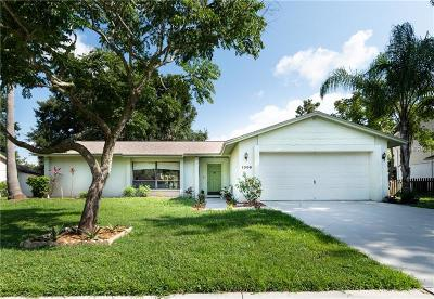 Valrico Single Family Home For Sale: 1306 Holleman Drive