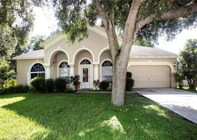Hernando County, Hillsborough County, Pasco County, Pinellas County Single Family Home For Sale: 2208 Glen Mist Drive