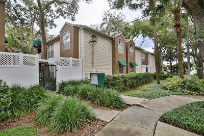 Tampa Condo For Sale: 606 S Albany Avenue #13