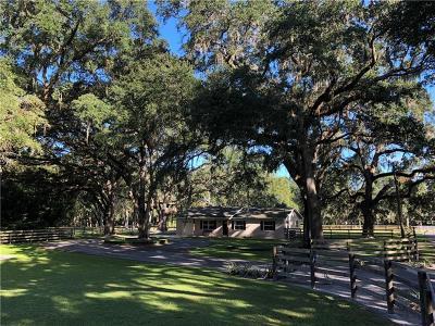 San Antonio Single Family Home For Sale: 30997 Crocodile Lane