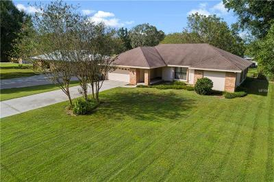 Lakeland Single Family Home For Sale: 2533 D R Bryant Road