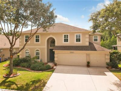 Tampa Single Family Home For Sale: 18309 Weyburne Avenue