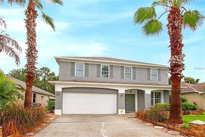Tampa Single Family Home For Sale: 12525 Sparkleberry Road