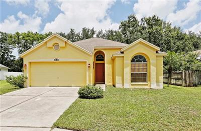Villa D Este Twnhms Condo, Villages At Wesley Chapel Single Family Home For Sale: 6312 Ashfield Place
