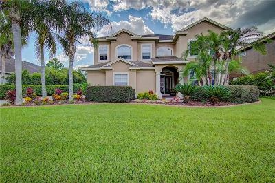 Tampa Single Family Home For Sale: 10732 Cory Lake Drive