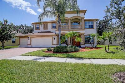 Wesley Chapel Single Family Home For Sale: 26738 Winged Elm Drive