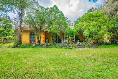 Odessa Single Family Home For Sale: 16731 Race Track Road