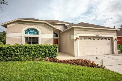 Wesley Chapel Single Family Home For Sale: 27546 Sky Lake Circle