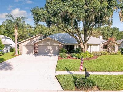 Odessa Single Family Home For Sale: 16120 Belle Meade Boulevard