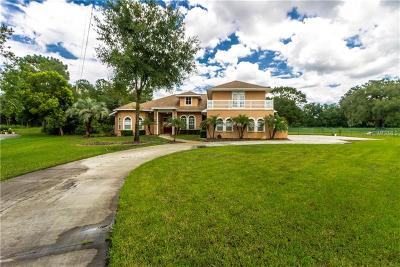 Wesley Chapel Single Family Home For Sale: 6664 Country Club Road