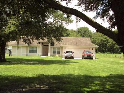 Plant City Single Family Home For Sale: 1438 McLin Drive